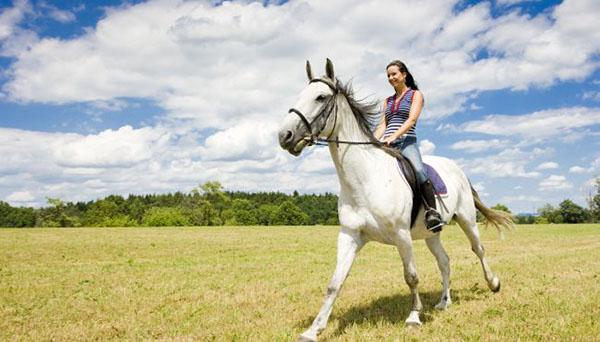 Девушка катается на лошадях возле харькова